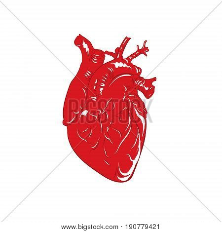 Vector illustration of heart in cartoon hand drawn style. Template for business card poster banner and label.