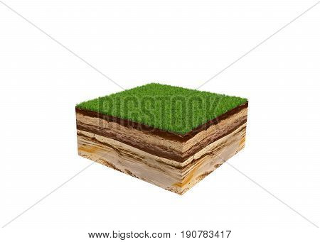 3D Illustration Of Cross Section Of Ground With Grass Isolated On White No Shadow