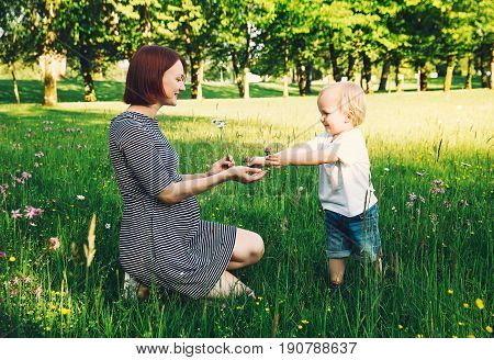 Pregnant woman with child in flower meadow. Mother and son on nature in summer park. Little child boy walking with mother who pregnant for second time. Pregnancy new life family parenthood concept