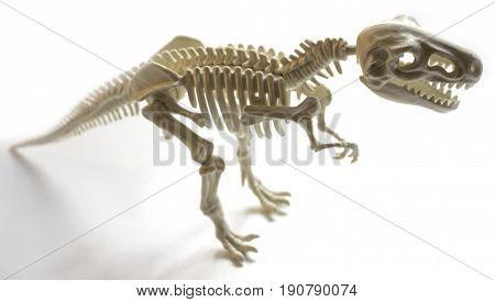 Tyrannosaur skeleton figurine on a white background, facing right