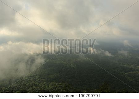 Morning fog in dense tropical rainforest, Pha mo e-dang,Kantharalak, Thailand
