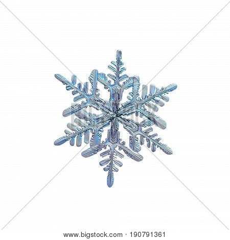 Snowflake isolated on white background. Macro photo of real snow crystal with fine hexagonal symmetry, glossy relief surface, elegant arms with side branches. Snowflake photo taken in cold blue light.