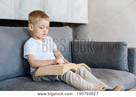 Clever child. Productive inspired vibrant boy spending time at home and enjoying his hobby while perusing pages of some interesting story