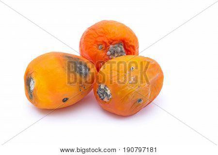 Three rotten tomato isolated on white background