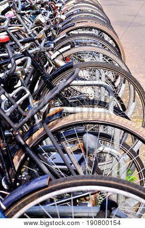 front wheels of bikes in bicycle rack in Amsterdam