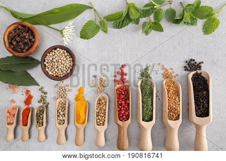 Spices on wooden spoon. Aromatic ingredients and natural food additives.