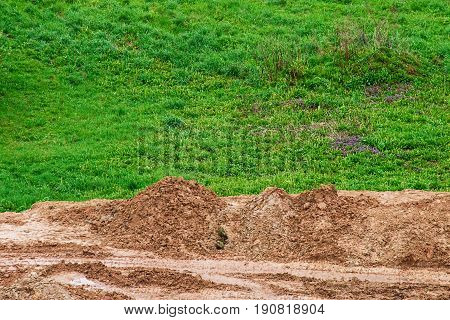 Green grass landscape with ground on foreground