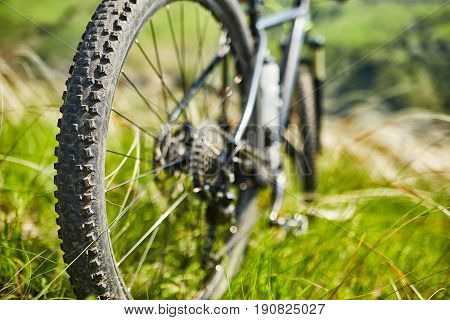 Close-up of the bicycle wheel in the summer green grass in the field. Detail of the mountain bicycle. Horizontal photo. Sportive backgrounds. Concept of the healthy and active lifestyle.
