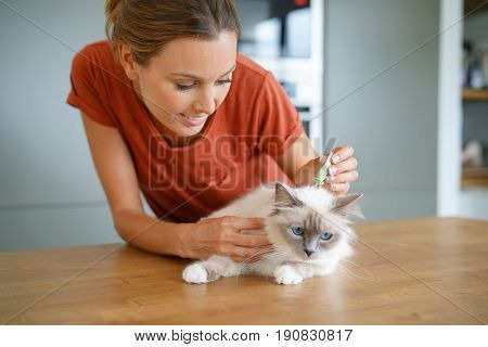 Woman injecting cat product to prevent from fleas
