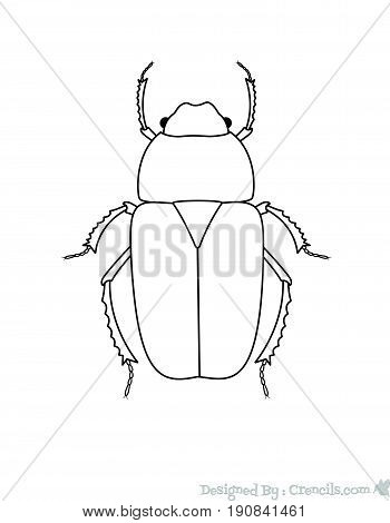 Drawing Art of Beetle Insect - Vector Stock Illustration