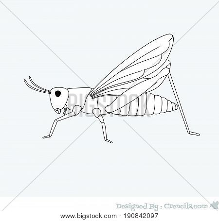 Creepy Grasshopper Drawing - Vector Stock Illustration