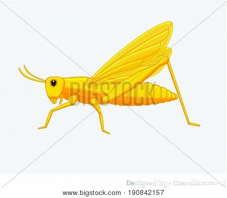 Creepy Grasshopper Insect - Vector Stock Illustration