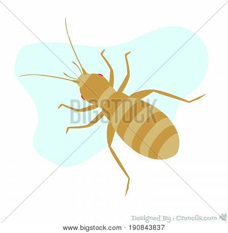 Weird Creepy Tiny Louse Insect Vector Illustration