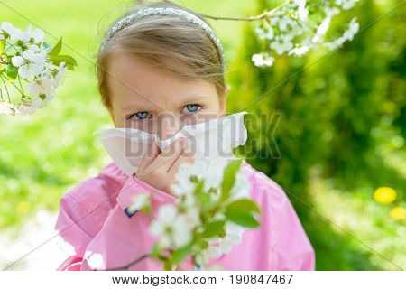 Allergy. Little Girl Is Blowing Her Nose Near Spring Tree In Bloom - Sneezing Girl. Child With A Han