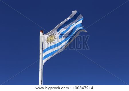 The national flag of Uruguay. The flag was first adopted by law on December 1828 and had 17 stripes until July 1830, when a new law reduced the number of stripes to nine.