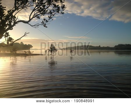 Sea mist ripples and reflections on a winter's morning - Kerikeri Inlet Northland New Zealand NZ