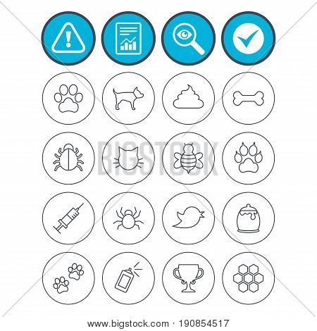 Report, check tick and attention signs. Pets and Insects icons. Dog paw. Cat paw with clutches. Bone, feces excrement and vaccination. Honey, bee and honey comb. Investigate magnifier symbol. Vector
