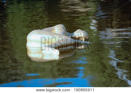 Florence, Italy - June, 5, 2017: Swimming sculptur in the fontane in the Pitti palace garden in Florence, Italy