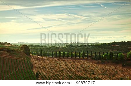 Panorama Of The Hills Of San Gimignano, Tuscany In Italy.