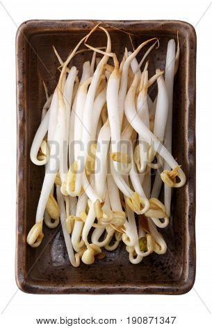 Mung bean sprouts in a brown ceramic rectangular bowl isolated on white background. Superfood. Top view.