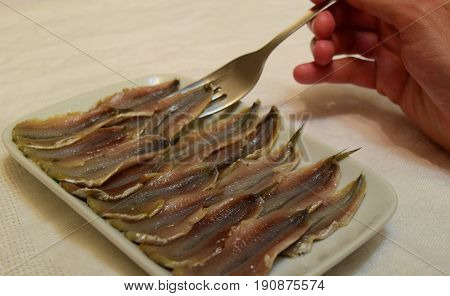 Headless salty anchovy fish in ceramic plate with fork in hand on white tablecloth background