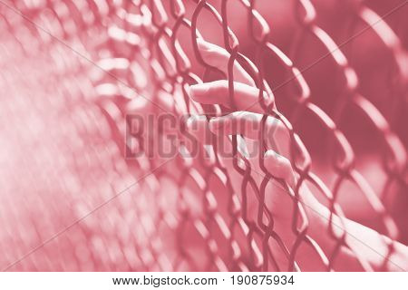 hand at fence prison in jail no freedom struggle concept.