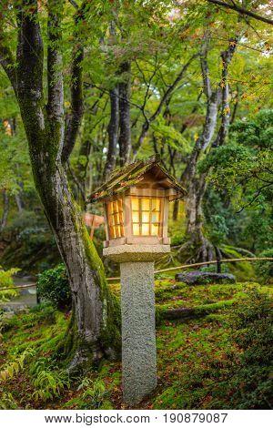 Japanese style garden with stone lantern in autumn season wet moss rain forest garden in Japan.