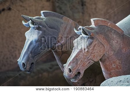 Xian China May 28 2017 Horses from the world famous Terracotta Army part of the Mausoleum of the First Qin Emperor and a UNESCO World Heritage Site located in Xian China