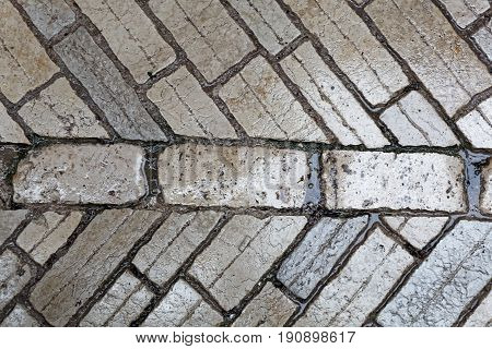 Wet paver blocks of natural stone on a road.