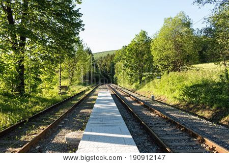 railroad track winding through green summer forest