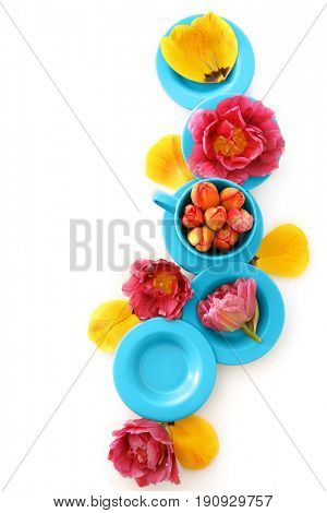 Composition with beautiful tulip flowers and dishware on white background