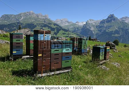 Houses for beekeeping and production of honey over Engelberg on the Swiss alps