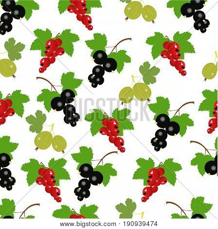 beautiful berry background. red currants black currants and gooseberries on a white background. vector illustration