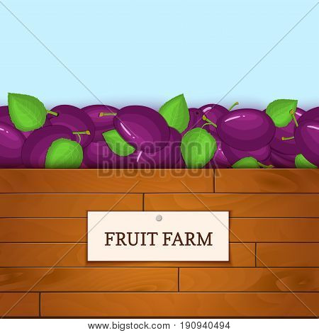 Wooden box with plum fruits. Vector card illustration. Boards wood background, border with plums fruit and label. For the design of packaging, food marmalade, jam, juice, detox diet.