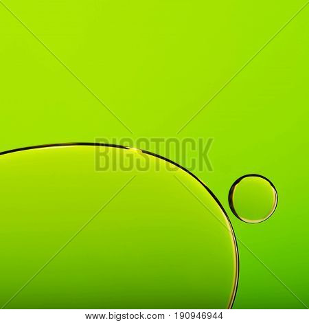 Oil drops in water bubble on green abstract background