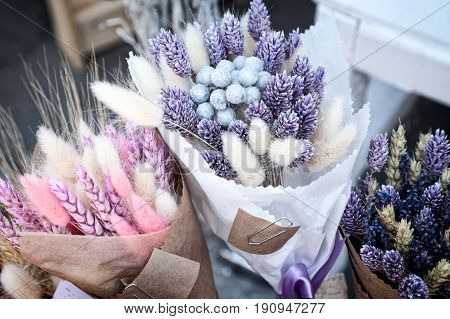 Dry herbs colorful purple and pink bouquets at flower shop. Beautiful bundles of pink and blue dried spikelets at a market - tinted lavender canary grass bunny tails wheat