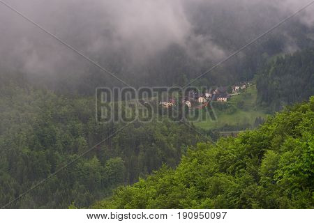 Mountain landscape shortly after spring rain. Slovenian Alps. Forest Road, venerable tree, fog, clouds and peaks. The village of Jamnik Slovenia.