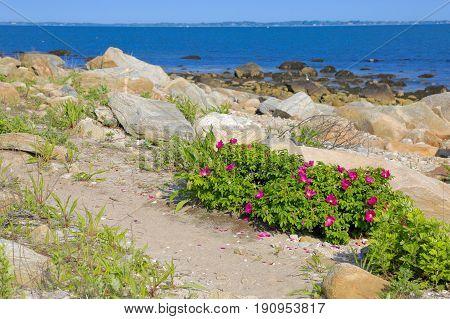 Bodfish Park at Cape Cod in MA
