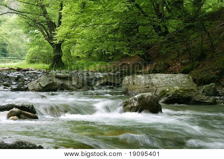 Stream in Bulgaria