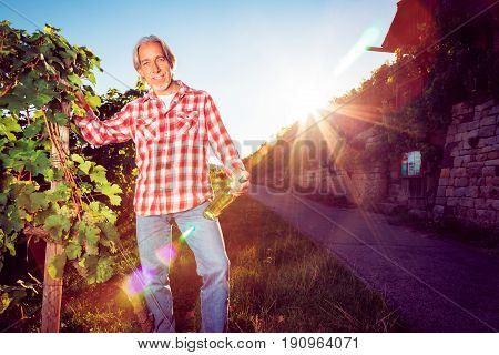 winemaker standing by his vineyard, holding bottle of wine. backlit by the setting sun, strong lens flare.