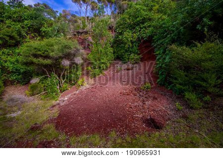Beautiful volcanic Rangitoto Island, with a red clay ground in a sunny day perfect for hiking.