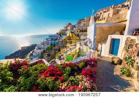 Panoramic view over Oia Santorini islands Greece