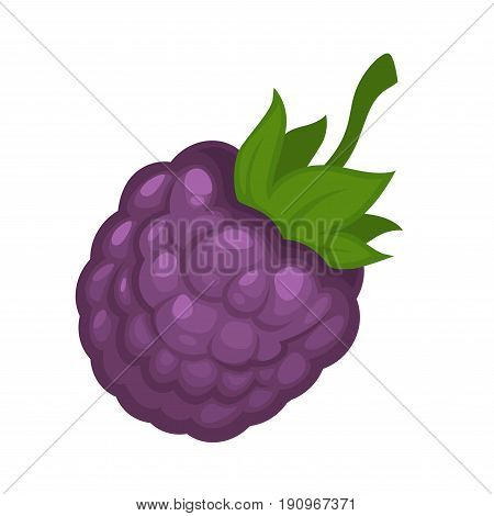 Cartoon tasty blackberry of violet color with small green leaves isolated flat cartoon vector illustration on white background. Delicious juicy wild forest berry for sweet homemade jam preparing.