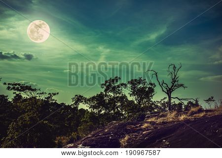 Landscape of night sky with clouds above wilderness. Beautiful bright full moon serenity nature. Cross process and vintage effect tone. The moon taken with my own camera.
