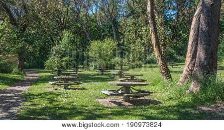 A view of picnic tables at Lincoln Park in West Seattle Washington.