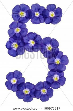 Arabic Numeral 5, Five, From Blue Flowers Of Flax, Isolated On White Background
