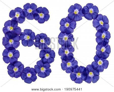 Arabic Numeral 60, Sixty, From Blue Flowers Of Flax, Isolated On White Background