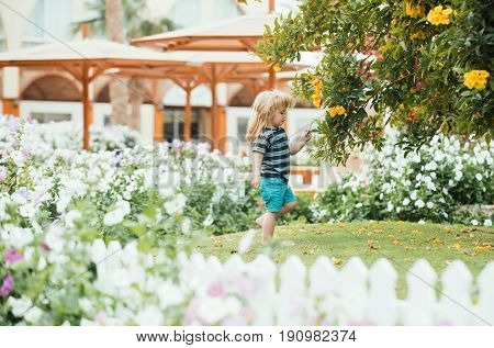 Child Or Small Boy Outdoor Near White Wooden Fence