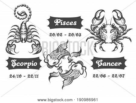 Set of Water Zodiac signs. Scorpion Fishes and Cancer drawn in engraving style. Vector illustration.