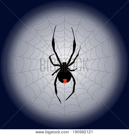 poisonous black widow spider and web on the moon. vector illustration
